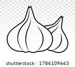 Two Garlic   Allium Sativum...