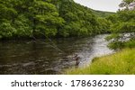 A fisherman spey casting for...