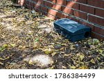 Black Metal external rodent rat bait station outside against a brick wall close up.  Pest Control.