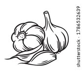garlic outline vector... | Shutterstock .eps vector #1786532639