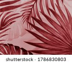 Beautiful Abstract Color Pink...