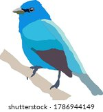 Vector Of Blue Bird Resting On...