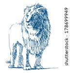 Lion Sketch Drawing On White...
