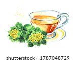 Herbal Tea In A Glass Cup With...