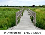 Close up on a wooden walkway, path or road made out of planks, logs and boards situated in the middle of a dense field or meadow full of shrubs, herbs, and other flora seen on a moody day in Poland