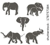 set of black white elephants in ... | Shutterstock . vector #178757384