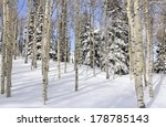 Winter Landscape In A Forest O...