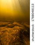 Underwater World Of Small Rive...