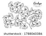 ginkgo hand drawn botanical... | Shutterstock .eps vector #1788060386