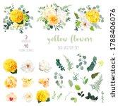 yellow hydrangea  mustard rose  ... | Shutterstock .eps vector #1788406076
