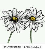 daisy flower vector... | Shutterstock .eps vector #1788466676