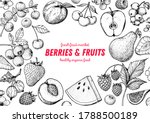 berries and fruits drawing... | Shutterstock .eps vector #1788500189