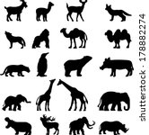 Animal Collection Vector...