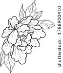 peony flower line work tattoo... | Shutterstock .eps vector #1788900410