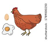 hen  egg and poached egg vector ... | Shutterstock .eps vector #1789000250