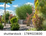 Beautiful Colorful Backyard Garden with Many Different Plants and Trees During Summer Sunny Afternoon - stock photo