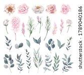 set of roses  peonies ... | Shutterstock . vector #1789040186