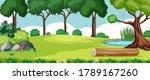 Blank Landscape In Nature Park...