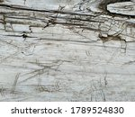 Texture Of Old White Wood. Sea...