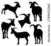 daghestan tur black and white...   Shutterstock .eps vector #1789652060