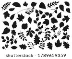 tree leaves and plant seeds... | Shutterstock .eps vector #1789659359