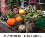 Autumn Decor  Composition With...