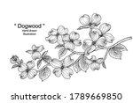 sketch floral decorative set.... | Shutterstock .eps vector #1789669850