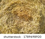 Close Up Hay In Round Bale. Ha...
