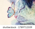 Cat And Butterfly On Nose. Cute ...