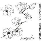 magnolia branches  flower set ... | Shutterstock . vector #1789904306