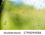 Small photo of Cobweb or spiderweb natural rain pattern background close-up. Cobweb with drops of rain pattern in blue light. Cobweb net texture with morning rain bokeh. Partial blur view lines spider web necklace