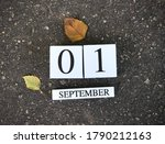 First Of September. Back To...