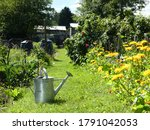 Small photo of Watering can on path in allotment garden in the summer sunshine. Traditional watering can on mown path amongst vegetable and flower beds.