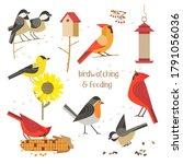 Birdwatching  Bird Feeding Icon ...