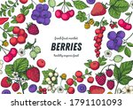 berries drawing collection.... | Shutterstock .eps vector #1791101093
