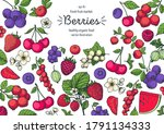 berries drawing collection.... | Shutterstock .eps vector #1791134333
