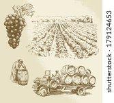 vineyard  harvest  farm   hand... | Shutterstock .eps vector #179124653