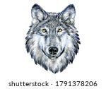Print Portrait Of A Wolf In...