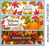 hello autumn vector banners... | Shutterstock .eps vector #1791438530