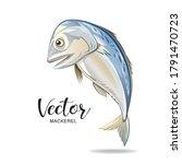 mackerel fish vector  popular... | Shutterstock .eps vector #1791470723