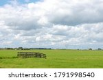 Summer Countryside Landscape...