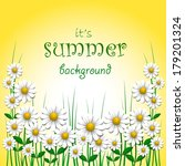 summer background with camomile ... | Shutterstock .eps vector #179201324