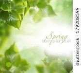 spring leaves   Shutterstock . vector #179208599