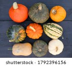 pumpkins and squashes colorful...   Shutterstock . vector #1792396156