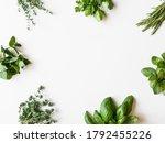 Frame Of Various Fresh Green...