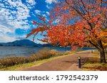 Japan. Autumn Day At Lake...