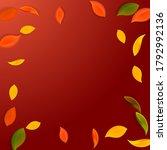 falling autumn leaves. red ... | Shutterstock .eps vector #1792992136
