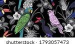 Tropical Birds  Flowers  Fruits ...