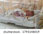 Small photo of Premature newborn baby in the hospital incubator. Neonatal intensive care unit