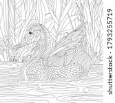 Vector coloring illustration with duck on lake. Plants. Colouring page. waterfowl bird print. Monochrome line drawing